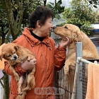 成都爱之家动物保护中心
