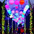 金沙太阳节灯会(4)
