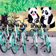 成都街头-熊猫守车