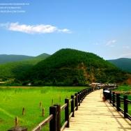 泸沽湖风景